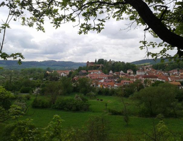 'Creuzburg237