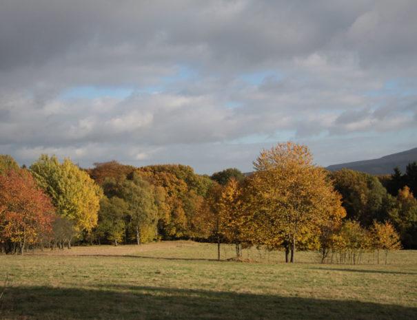 Herbst_1832