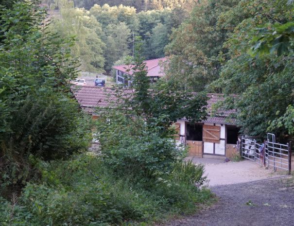ReiterhofHirschberg5