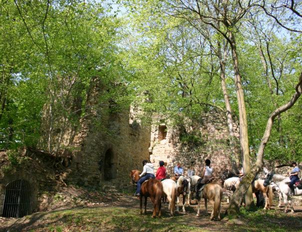 RuineReichenbach