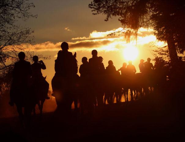Sonnenuntergang1_Reiter
