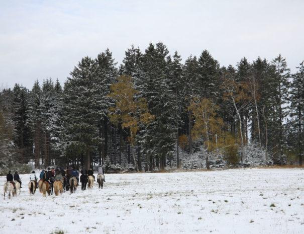 Winter_6959